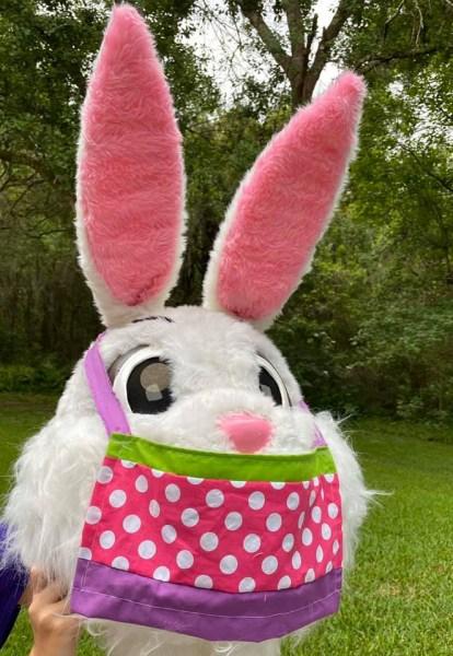 Bunny Virtual Color Run