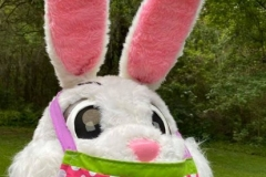 Bunny Virtual Color Run